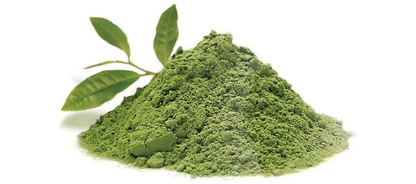 Экстракты из зеленого чая